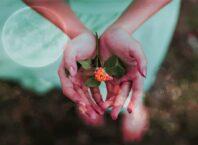 Ръцете символизират споделянето и вземането. Те говорят за взискателните ни нужди.